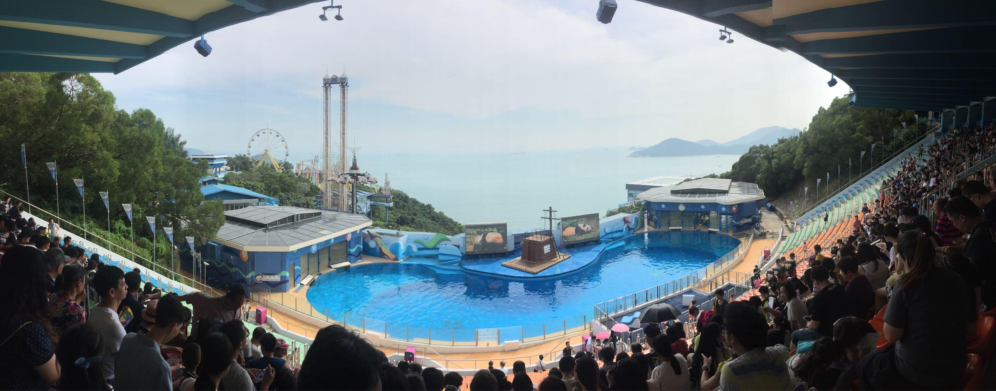 等着看海豚表演的观众席